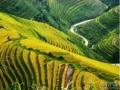 寻访广西最美的山水风景体验贺州淳朴的民俗风情