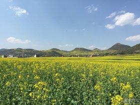 我和西耶那2015春节云南腾冲-大理7日游