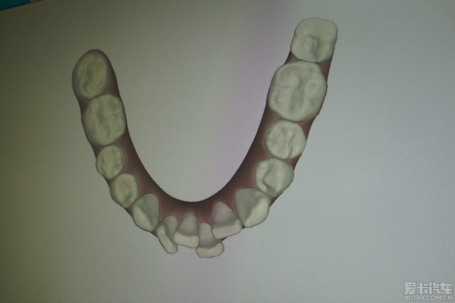 牙膏盒制作动物牙齿