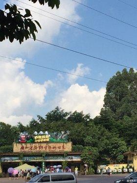 【爸爸去哪儿了~广州长隆野生动物园】