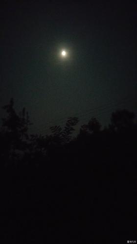 侄子结婚,再回老家;果实满园,月亮圆圆!