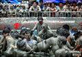 疯狂性感的韩国泥浆玩乐之旅
