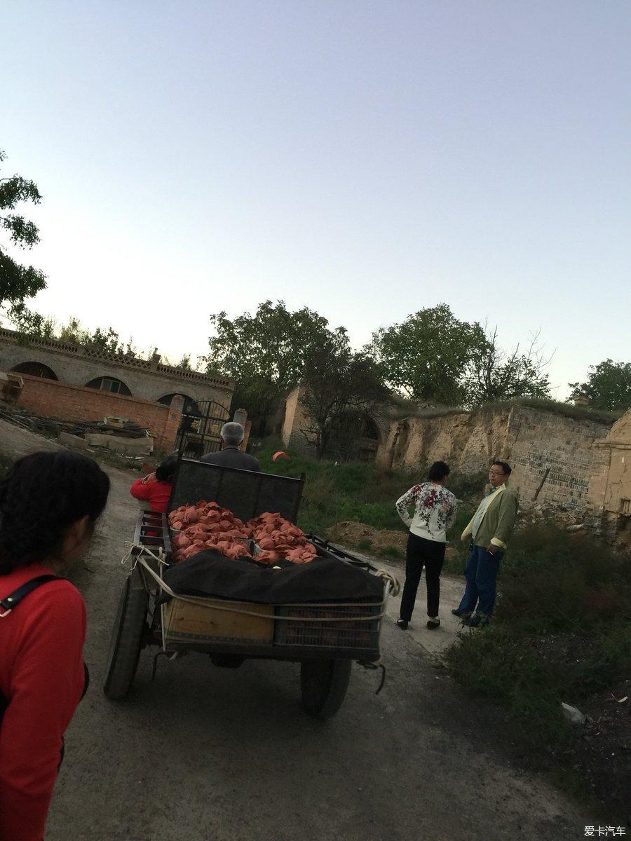 中国第一梨乡--大连一日游初中部辽师隰县附中图片