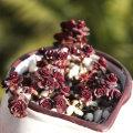小球玫瑰_多肉植物系列二十九