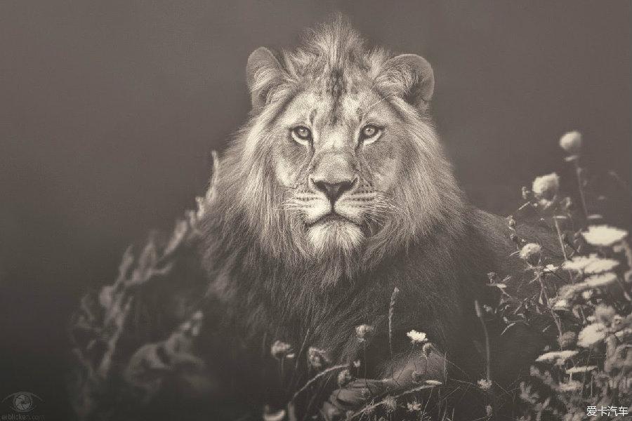 非洲灵魂——德国摄影师manuela