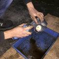 南宁旺狮――标致408每次保养必不可少的项目*清洗节气门*