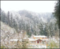 开上80玩雪去-鸡冠山森林公园免费玩雪记