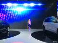 2015第十九届深港澳国际车展---靓丽车模篇!
