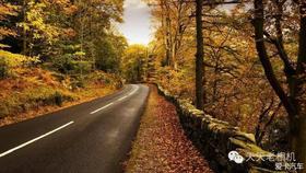 最美的风景不是在路上,而是路本身