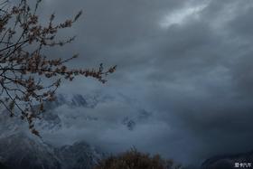 诗和远方——四月自驾西藏寻找最美春天