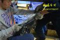 【广州哈弗H6coupe改灯】改装海拉透镜广州蝙蝠改灯