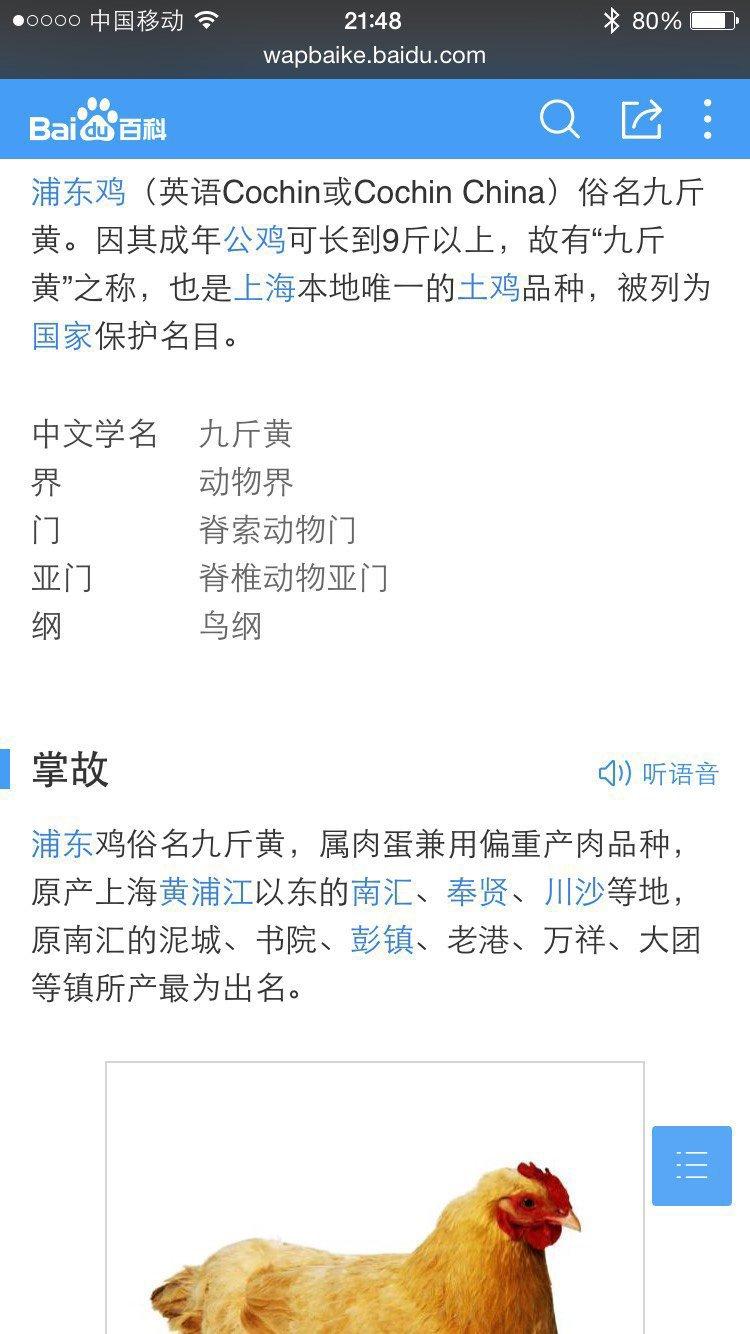 拔牙减肥法_第2页_北京瘦脸汽车_XCAR爱卡男的如何论坛,脸大图片