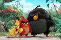 娱乐至上挑剔开场愤怒的小鸟玩转儿童节