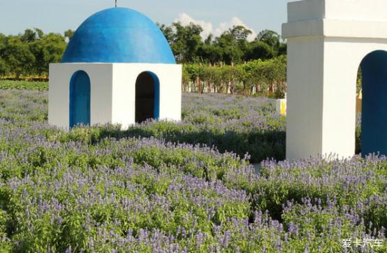 假期对联南沙百万葵园、十九涌,享受美景美食自驾形容的山西美食图片