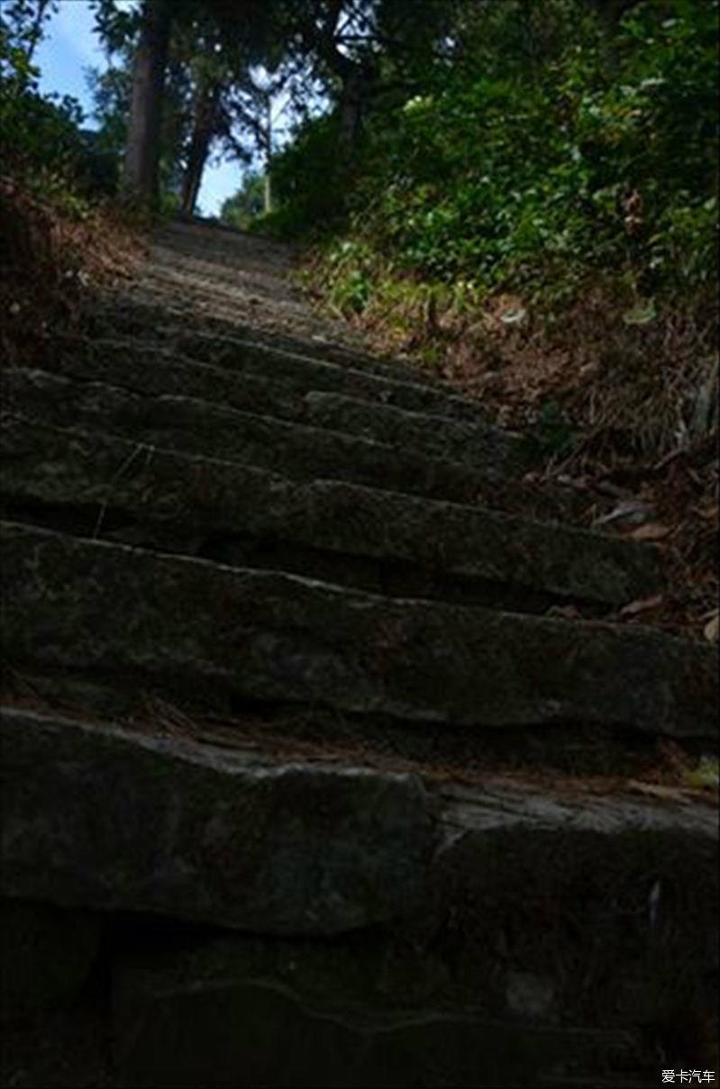 端午节自驾游←→瑞昌景区青山森林公园