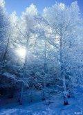 桑拿+雾霾,想念冬天滑雪的日子