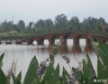 一汽大众25周年客户关爱第三弹――东方女儿国泸沽湖免费自驾游