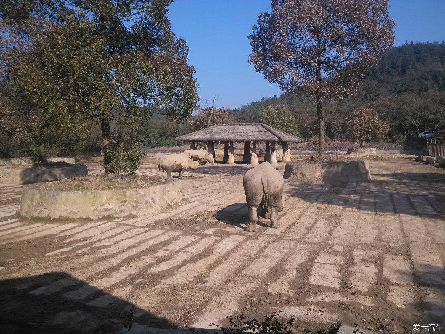 > 杭州富阳野生动物园一日游
