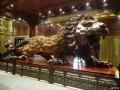 乐山乌木博物馆