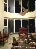 悲剧!台风过后厦门豪华海景房变成了这样