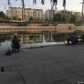 """固特异约你""""异""""起跑2016线上北马之我的中秋节"""