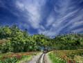 最后的小火车――嘉阳小火车