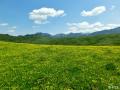 若尔盖草原,回归宁静的好去处