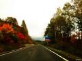 一路秋景一路画----万里单骑游关东