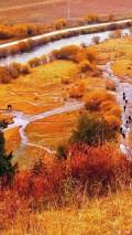 若尔盖草原(3)