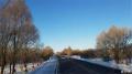 冬雪中的阿荣旗库伦沟林区
