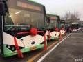 低碳转型新力措西安投运1100辆比亚迪K8纯电动公交车