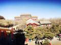 【固特异一路相伴】逛了庙会的春节才叫完美!