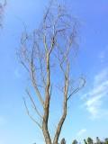 自驾贵州安顺龙宫,黄果树瀑布五日自驾游