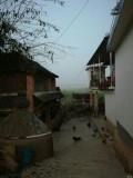 西双版纳勐海县傣族寨子