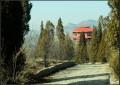 冬日里的红叶谷(50mm定焦)