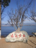 【固特异一路相伴】春节出游之邛海印象