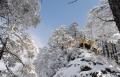 驾RX5赴西岭雪山,看天下奇观