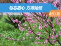【社区日报】第450期:勿忘初心方得始终