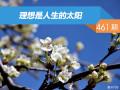 【社区日报】第461期:理想是人生的太阳