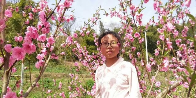 阳春三月看桃花去