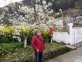 陪父母一起赏苍溪梨花享受升钟湖休闲生活两天自驾旅行路书和游记