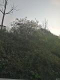 老捷达的考验,望谟�G红水河