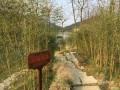 春风十里不如你!-途观L600公里感受+装踏板