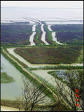 《南下进军中国最美滩涂,北上挺进'皖南川藏线'》清明自驾游记