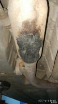 缝缝补补又三年…排气管修复喷油嘴清洗发动机仓清洗篇