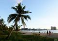 久违了――海南岛的椰风海浪,高高槟榔树下迷人的黎寨!