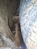 翼虎后轮内衬挤破了,里面都是泥,要拆开清洗吗?