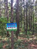 【清凉一夏】亲近自然、低碳生活-南京锐界俱乐部溧阳自驾游
