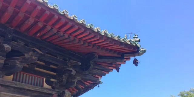 夏游隆兴寺