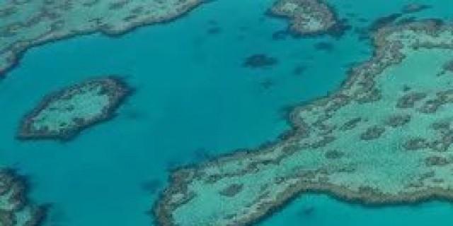 探寻神秘的富人岛--汉密尔顿岛